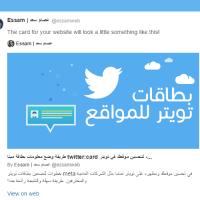 websites-twitter-meta-tags
